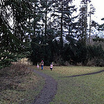 """Dog Walks in Cammo Estate by Christine McIntosh licensed under CC BY-ND 2.0"""