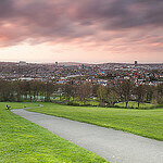 """Dog Walking in Meersbrook Park by Matthew Hillier licensed under CC BY 2.0"""