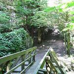 """""""Dog Walking in Rouken Glen Park by Glasgowfoodie licensed under CC BY-ND 2.0"""""""