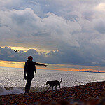 """Dog Walking on Brighton Beach by Pavlina Jane licensed under CC BY-SA 2.0"""