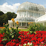 botanic gardens, a great place for dog walks in belfast