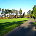 drumglass park, a great place to walk your dog in belfast